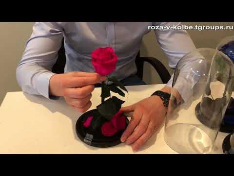 Вопрос: Вечная роза под стеклом – пародия на живую розу, ее мумия Это подарок?