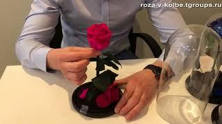 Вечная роза в колбе - обзор