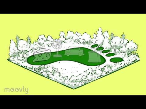 The Ecological Footprint Explained