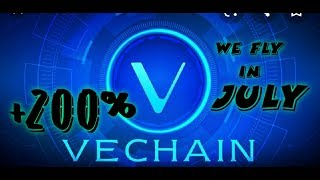 #VET VeChain Delivered More than 40% Return in June ( +80% JULY WE FLY  BUCKLE UP ALT SEASON IS HERE
