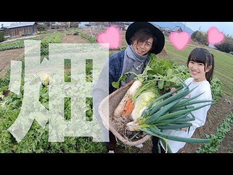 ゆーぽん初めての野菜収穫をしてみたら.... in 佐賀県