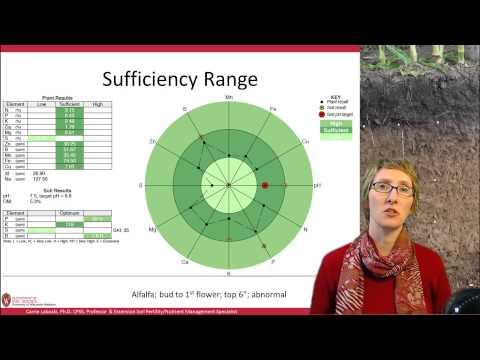 Soil Nutrient Basics, Plant Tissue Testing, 4/4