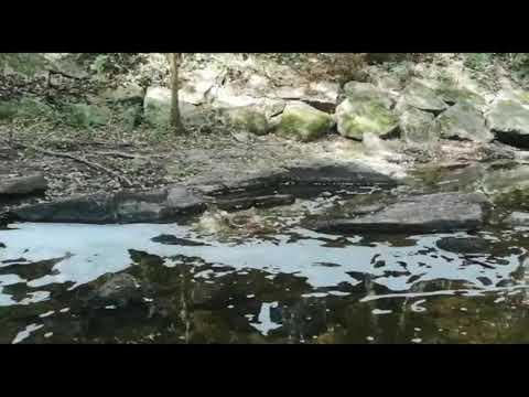 Aparece un vertido en el río Barbaña