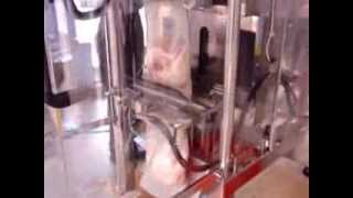 Tg 350 Rc - Continuous Motion Vffs Packaging Fresh Poultry