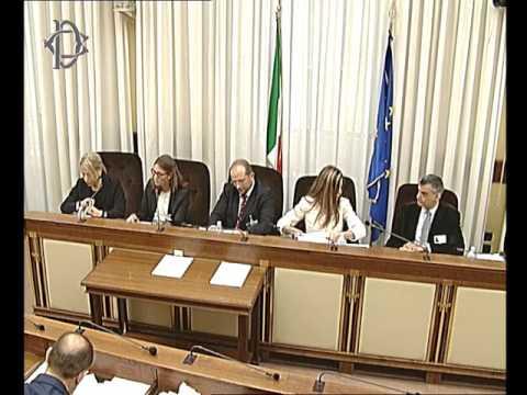 Roma - Audizione Moas (04.05.17)