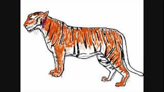 All comments on dessin de tigre comment dessiner youtube - Comment dessiner un tigre ...