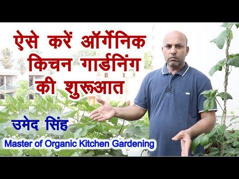 ऐसे करें आर्गेनिक किचन गार्डनिंग की शुरुआत Easy way to start organic kitchen Gardening