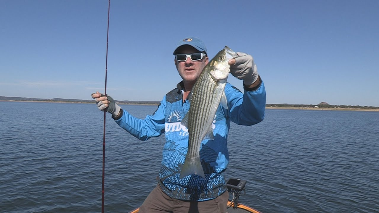 Lake buchanan tx striper hybrid fishing southwest for Lake buchanan fishing