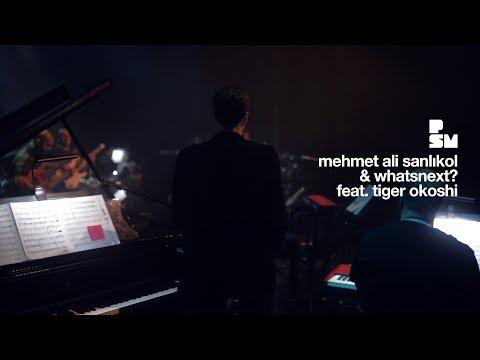 "zorlu psm için ""mehmet ali sanlıkol & whatsnext? ft. tiger okoshi"" konseri"