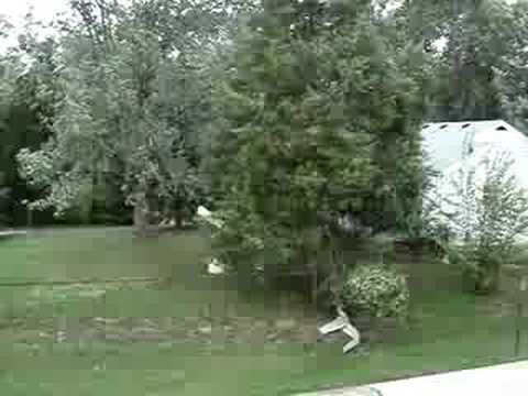 High winds in Cincinnati