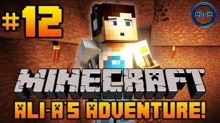 Minecraft - Ali-A's Adventure #12! -
