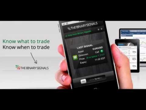 Binary option signal provider
