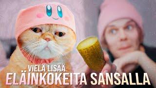 Vielä lisää eläinkokeita Sansalla!