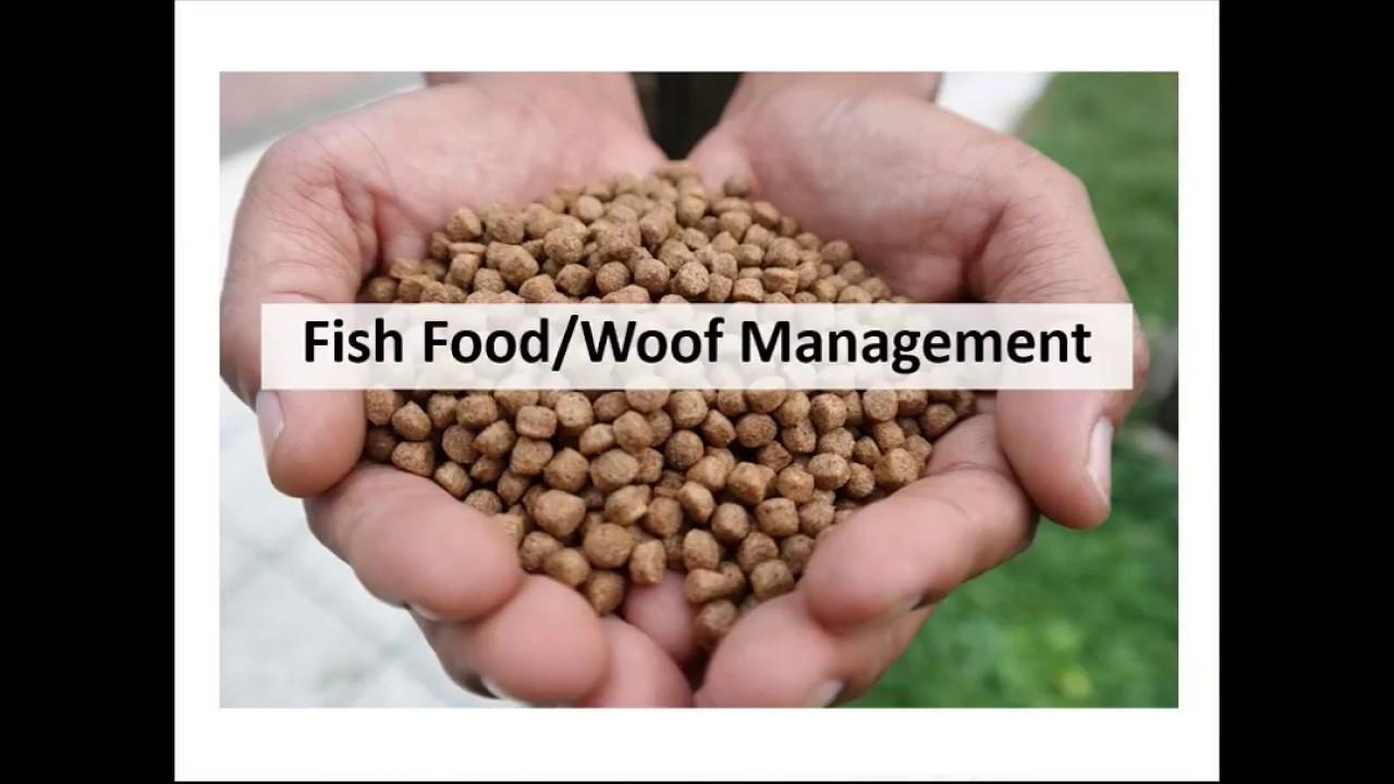 Biofloc Fish Farming Online Training Part 04    Bangla by rajibul islam