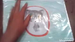 Обзор всех рисунков Коты-Воители 🐈