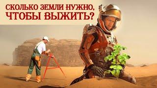 Сколько земли нужно, чтобы выжить, и что выращивать