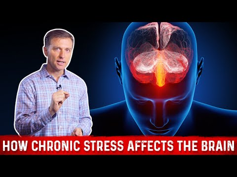 How Chronic Stress Affects the Brain