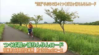 磯山さやかの旬刊!いばらき『サイクリング』(平成29年9月22日放送)ダイジェスト版 磯山さやか 検索動画 12