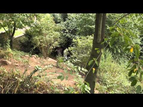 """dOCUMENTA (13) 154 / Natascha Sadr Haghighian / """"Tierpfad"""" Trail"""