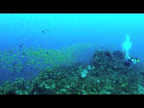 Island Scuba Sri Lanka