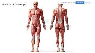 Di video ini kami akan menampilkan seputar pemeriksaan dan latihan apa saja untuk mengatasi lutut ya.