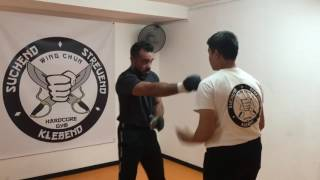 Download Video Ip Man Wing Chun Freestyle Combat MP3 3GP MP4