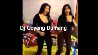 Video Goyang Dumang Versi Gebby Vesta VS Goyang Drible Duo Serigal download MP3, 3GP, MP4, WEBM, AVI, FLV Oktober 2017