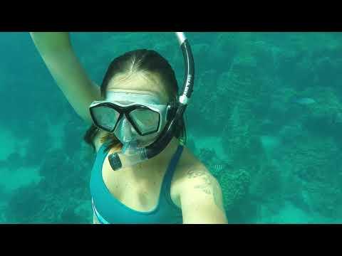 Free Diving Fish Eye GUAM