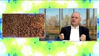 Zdrowie na śniadanie  - Praca pszczół w zdrowiu człowieka