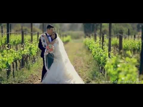 Vivianna + Toni Wedding Highlights - Valle de Guadalupe