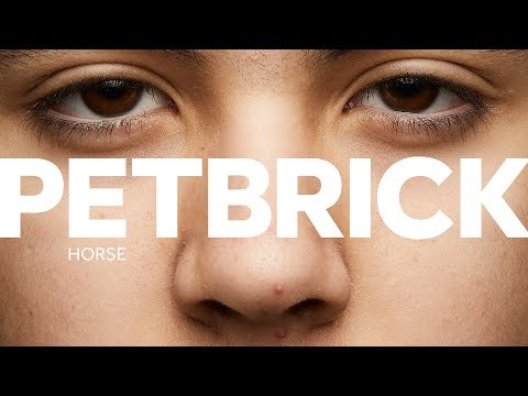 PETBRICK – Horse (Track Video)
