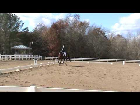 Heavenly Hill At Virginia Horse Trials