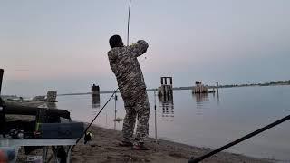 Рыбалка на волге на сома