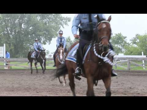 Chicago police mounted patrol graduation