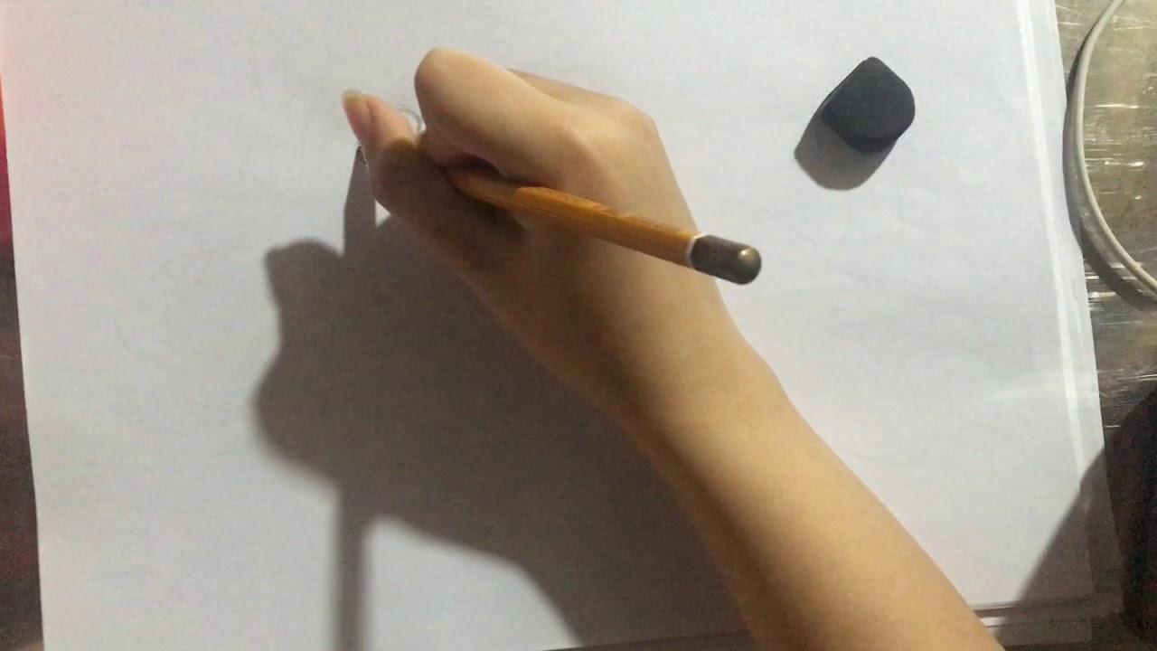 Cách vẽ con bướm cách điệu đơn điệu