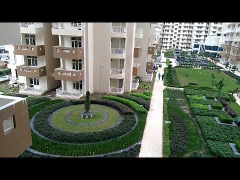Royal Nest - 'Ready To Move In' Project Tour/ Royal Nest Noida Extension # 9717102331 / 9871244451