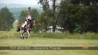 2010 Virgina Horse Trials CCI* JY - XC