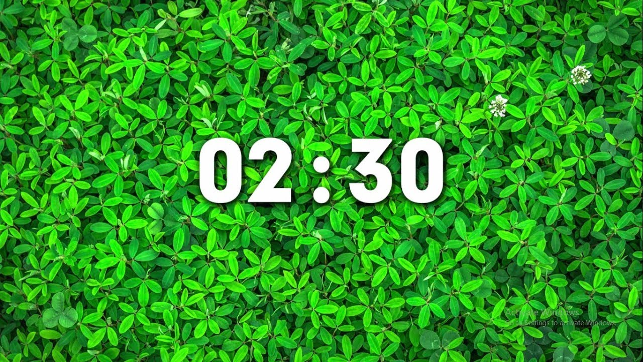 Countdown Timer - 2 Minutes and 30 Seconds