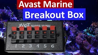 Avast Marine Breakout Box for Neptune Apex Review