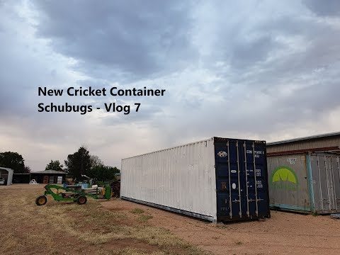 New Cricket Container Vlog 7