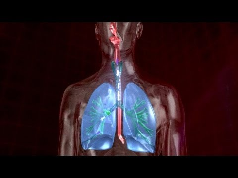 5 Minute Healing Sounds Qi Gong for Healthy Lungs!