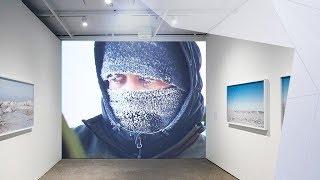 Le désert arctique en images