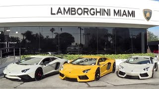 Lamborghini Miami Getting Ready for ACTION Aventador Huracan Murcielago Gallardo Supercar Paradise