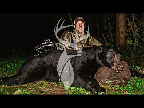 Best Bear Hunting Footage Ever! - Northern Wisconsin | Tenacious Hunter