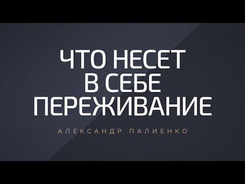 Что несет в себе переживание. Александр Палиенко.
