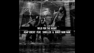 A$AP Rocky x Skrillex x Birdy Nam Nam - Wild For The Night (Mr. Alex Goin