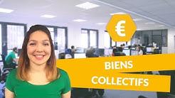 Biens collectifs - Economie - Première ES - digiSchool