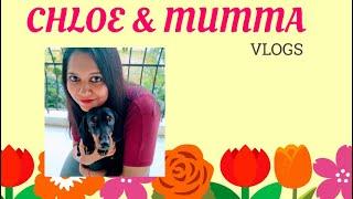 Chloe & Mumma | VLOGS | CUTE DOG | CHIRPY TALKS | Introduction