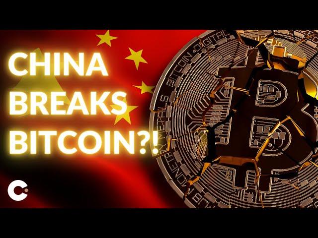 pelningumas bitcoin gold