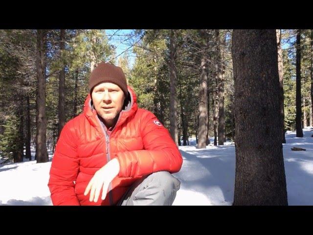 Down Insulating Jackets: Canada Goose Brookvale Hoody